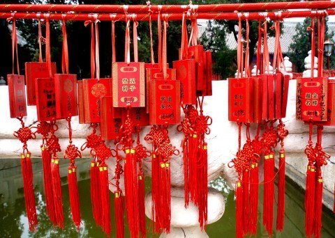 Chinese Bridge competition: participants share their memories