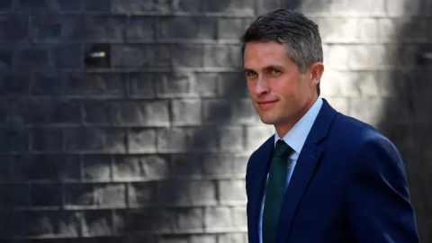 Gavin Williamson's Huawei leak: a calculated move