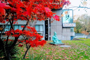 SOAS Autumn WP